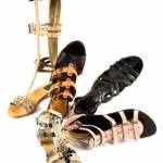 5968970-roman-sandals-still-life-fashion-composition